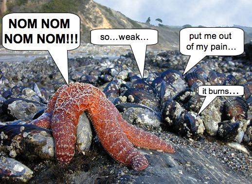 The future of the intertidal?  Image modified from <a href='http://www.marinebio.net/marinescience/03ecology/tpmid.htm'>marinebio.net</a>.
